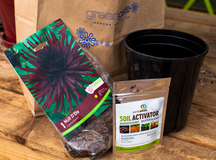spring bulbs soil activator