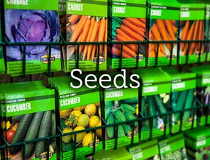 Seeds Catalogues