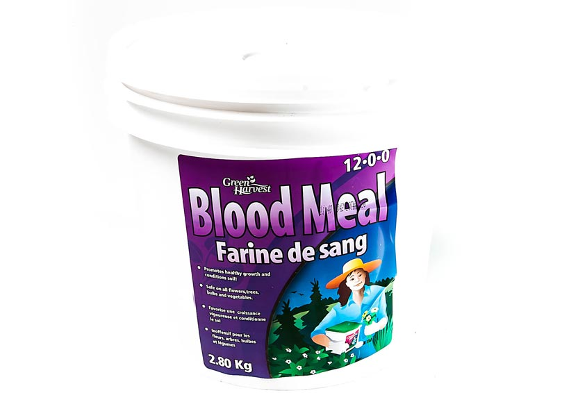 Blood Meal 12-0-0