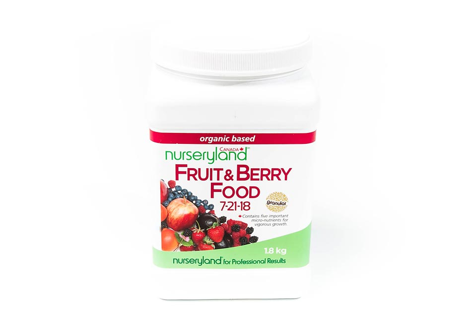 Fruit & Berry Food 7-21-18